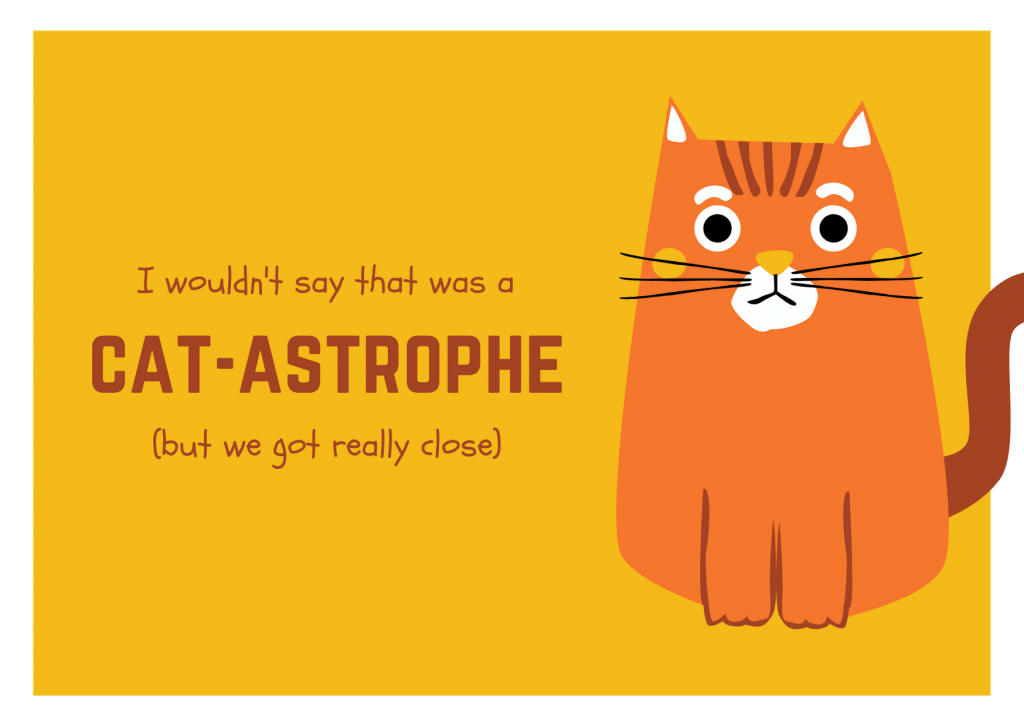 my cvid diagnosis almost a cat-astrophe